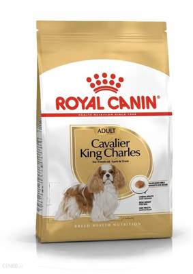 ROYAL CANIN Cavalier King Charles Spaniel Adult 1,5 kg sausas maistas suaugusiems kavalier king charles spanieliams