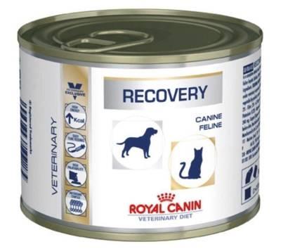 ROYAL CANIN Recovery 195g skardinė